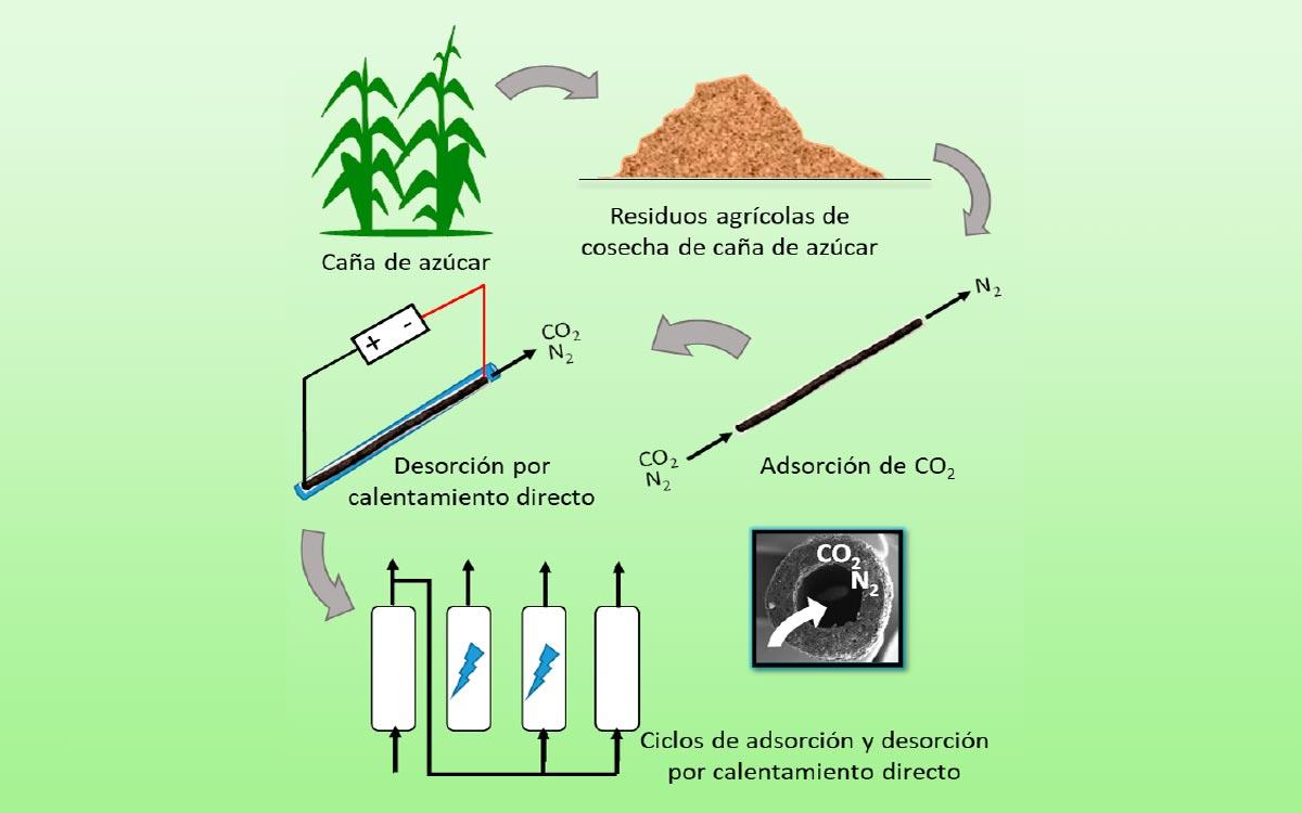 Tubos-Electroactivos-de-Carbon-Renovable-para-la-Captura-de-CO2